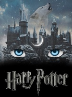Harry Potter and the Other Boy Who Lived - others - Webnovel