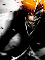 Bleach: Secret Intentions