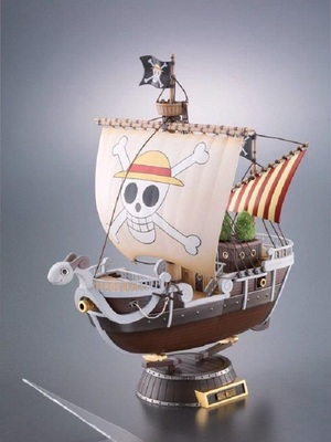 Silvered Pirate (One Piece)