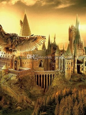 Harry Potter And The Rise Of Golden Falcon - others - Webnovel
