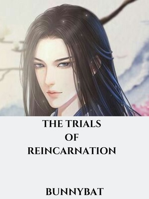 The Trials of Reincarnation