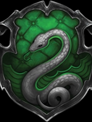 The Last Slytherin (dropped)
