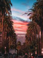 Return of King Of Hollywood