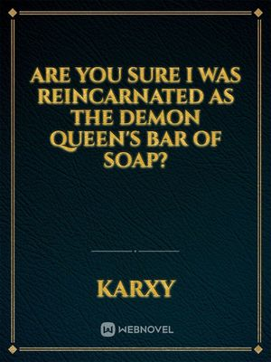 Are you sure I was reincarnated as the Demon Queen's bar of soap?