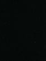 Law's Lovers