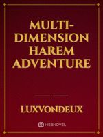 Multi-Dimension Harem Adventure