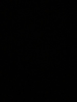 Totally In Love  By: L. Roberson